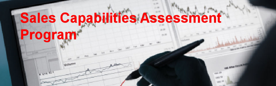 DWS Associates Sales Capabilities Assessment Program Services