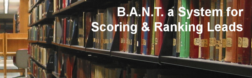 DWS Associates - B.A.N.T. a System for Scoring & Ranking Leads
