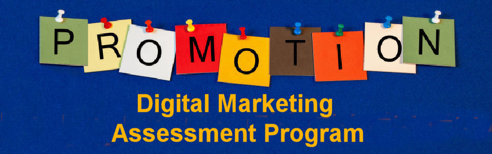 DWS Associates Digital Marketing Assessment Services