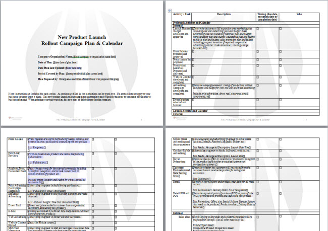 DWS Associates New Product Launch Plan Template