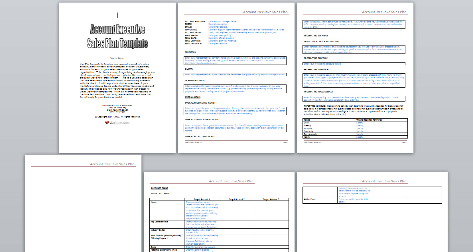 Account executive sales plan template sales executive sales plan template accmission Gallery